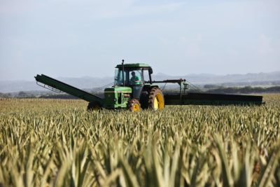Why Is a Trust Smart Estate Planning for Farmers?